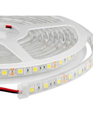 Tira LED recubierta